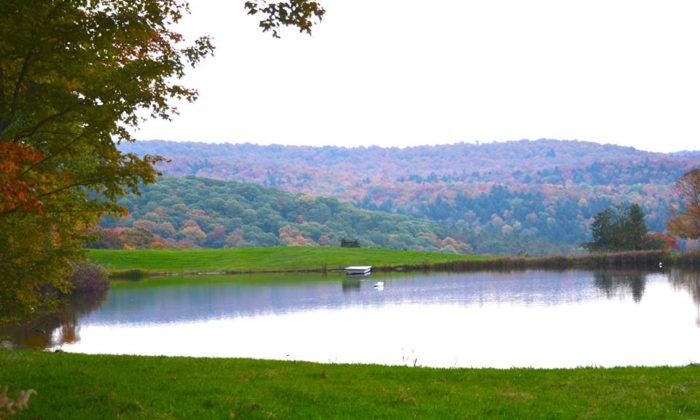 Tucked away on a beautiful farm in North Pomfret is the Cloudland Farm.