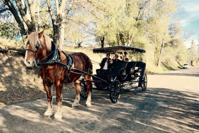 Or how about a carriage ride?