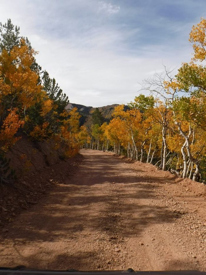 In the fall, the Pauite ATV Trail is magnificent.