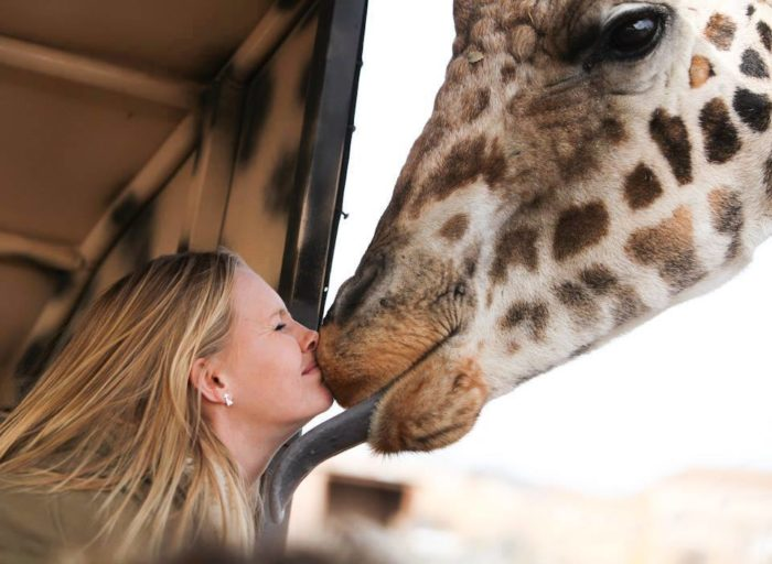 "You may even get ""kissed"" by a giraffe while on this safari ride!"