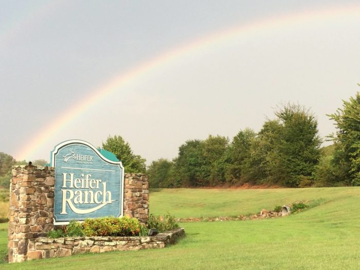 Heifer Ranch stands on 250 acres that are used exclusively for education.