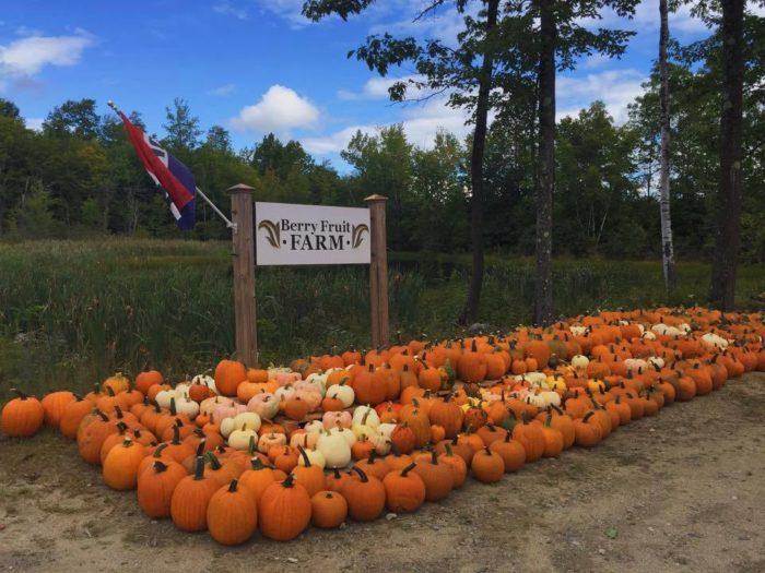 Pumpkin patch trolley to run two weekends in september — user.