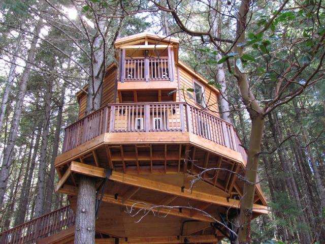 Take your pick between the resort's 4 fantastic treehouses. Here are some photos of the incredible Excalifir treehouse: