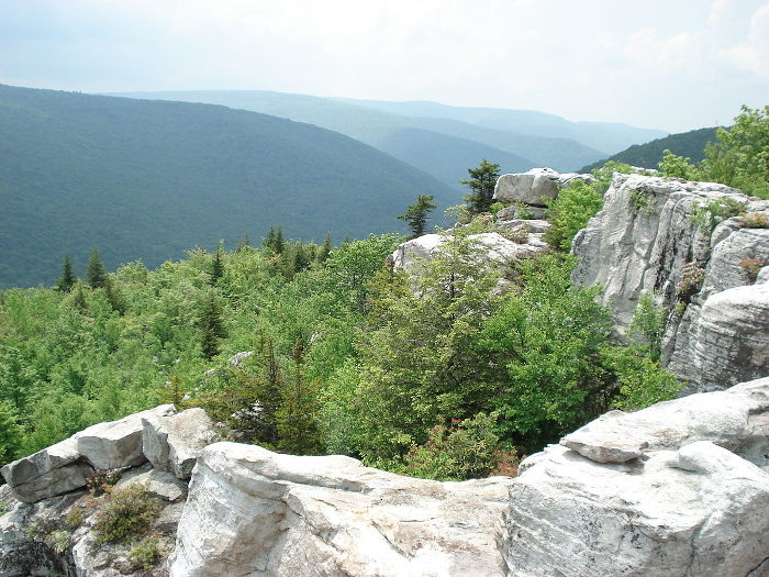 The Dolly Sods Wilderness area has beautiful scenery any time of the year.