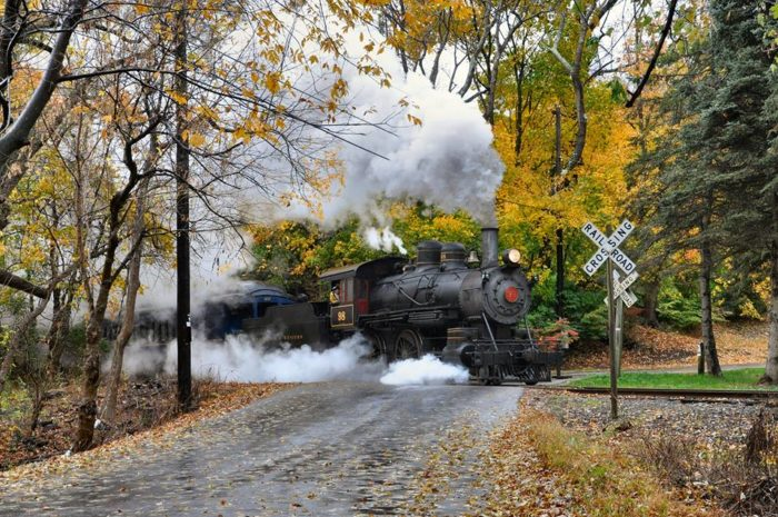 Both trip options allow you a unique fall foliage experience.