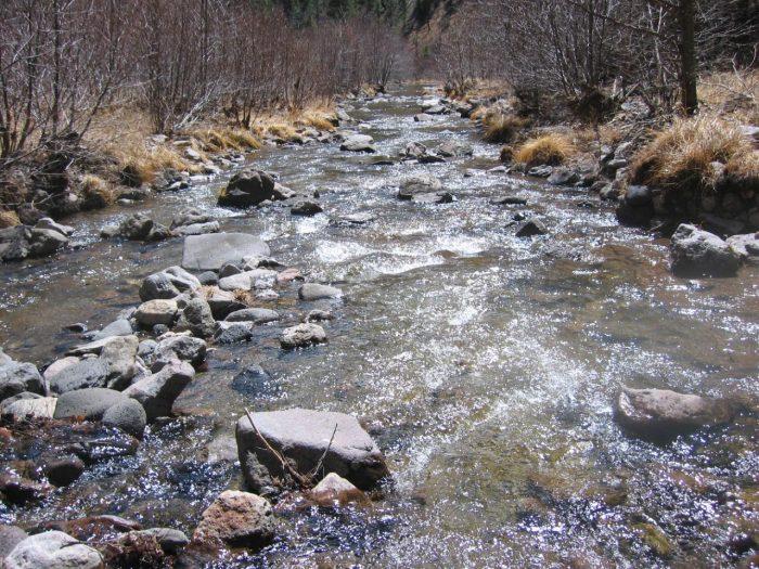 The headwaters of the Gila River, the last wild river in New Mexico, begin in the Mogollon Range.