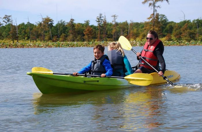 There are plenty of activities available in this pretty refuge. The best way to explore it is via kayak.