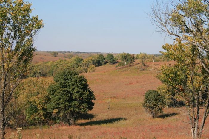 If you only spent the morning at Fall River State Park, we can guarantee there is more to see and do, so before you leave, make sure to head back to partake in more of the area's recreation opportunities (or to even just watch the sunset over the colorful tallgrass prairie)!