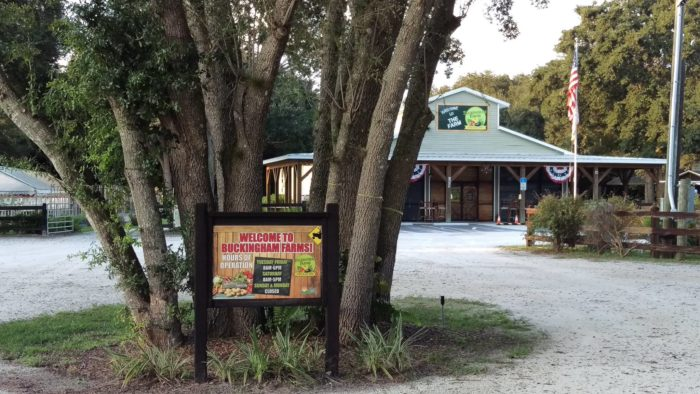 For the freshest food in Southwest Florida, head straight to the farm.
