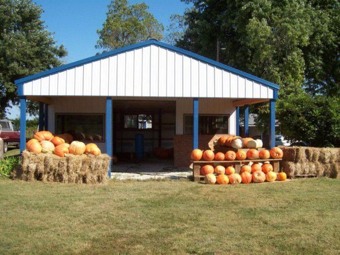 8. Mountain Home Berry Farm (Mountain Home)