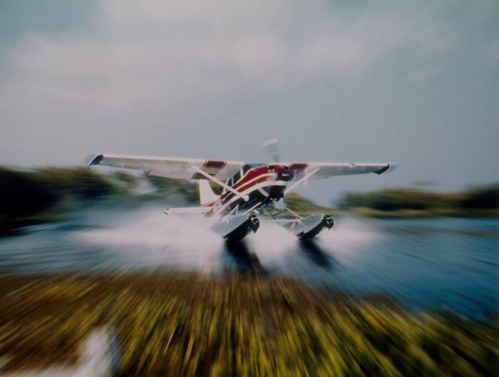 Since 1954, Southern Seaplane has been taking people out on beautiful tours of the Louisiana wetlands.
