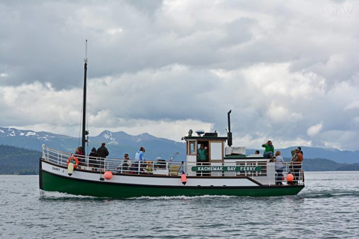 Head to Alaska's 'halibut fishing capital of the word' and take the Danny J from Homer over to the cozy little coastal town of Halibut Cove.