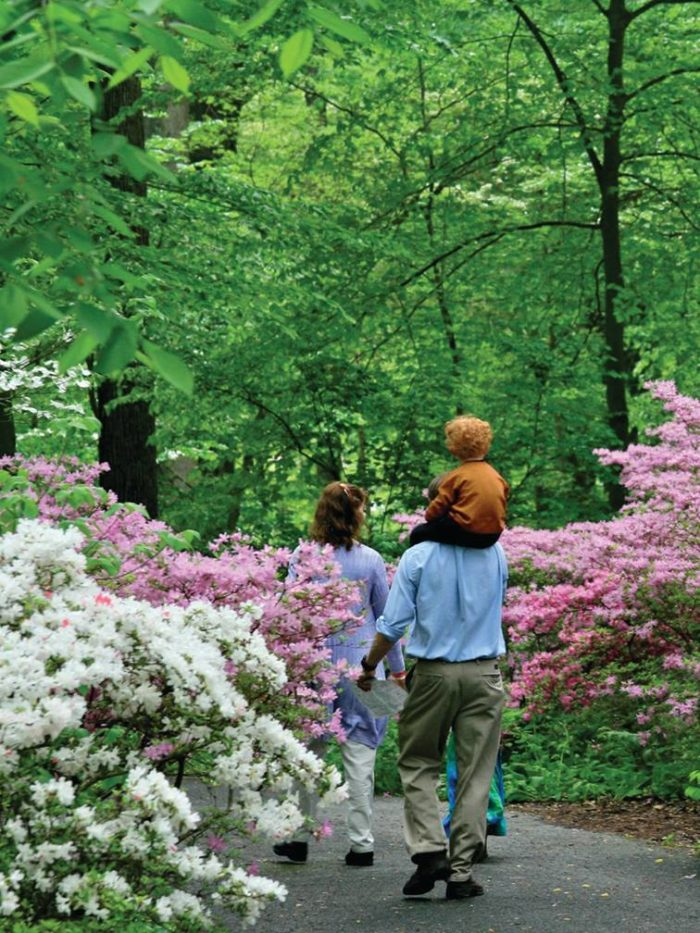 Winterthur is a great place for families - the kids will LOVE it.