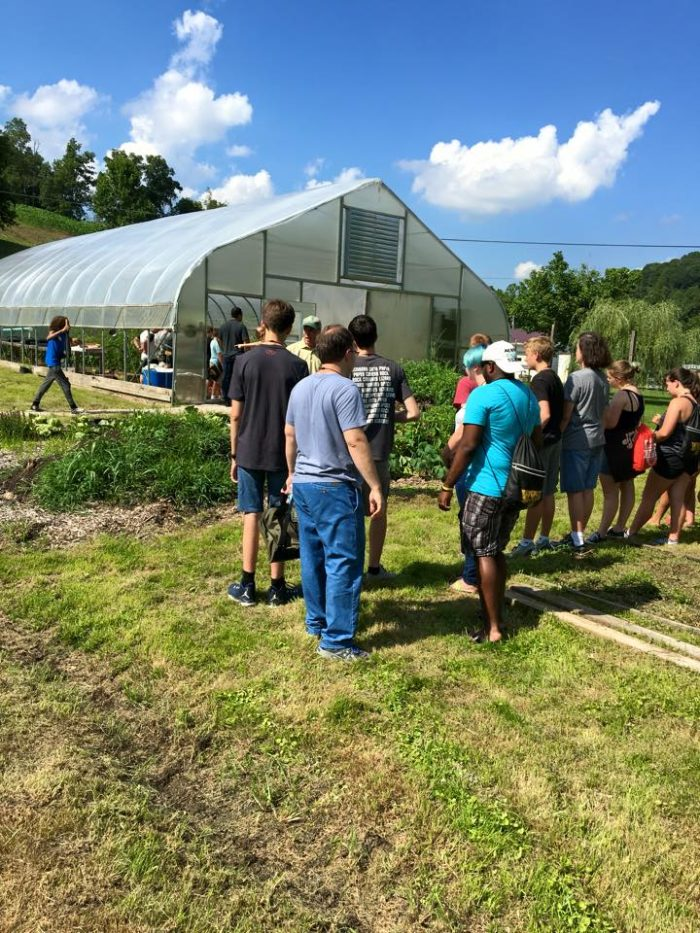If you arrive early, you can take a tour of the farm.