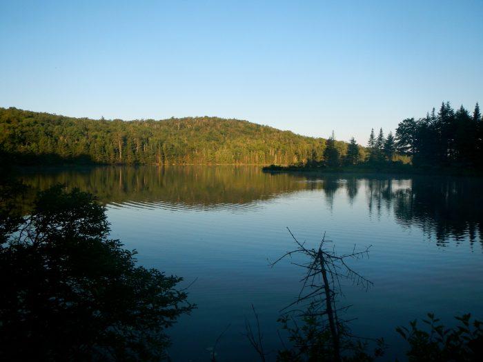 12.  Stratton Pond