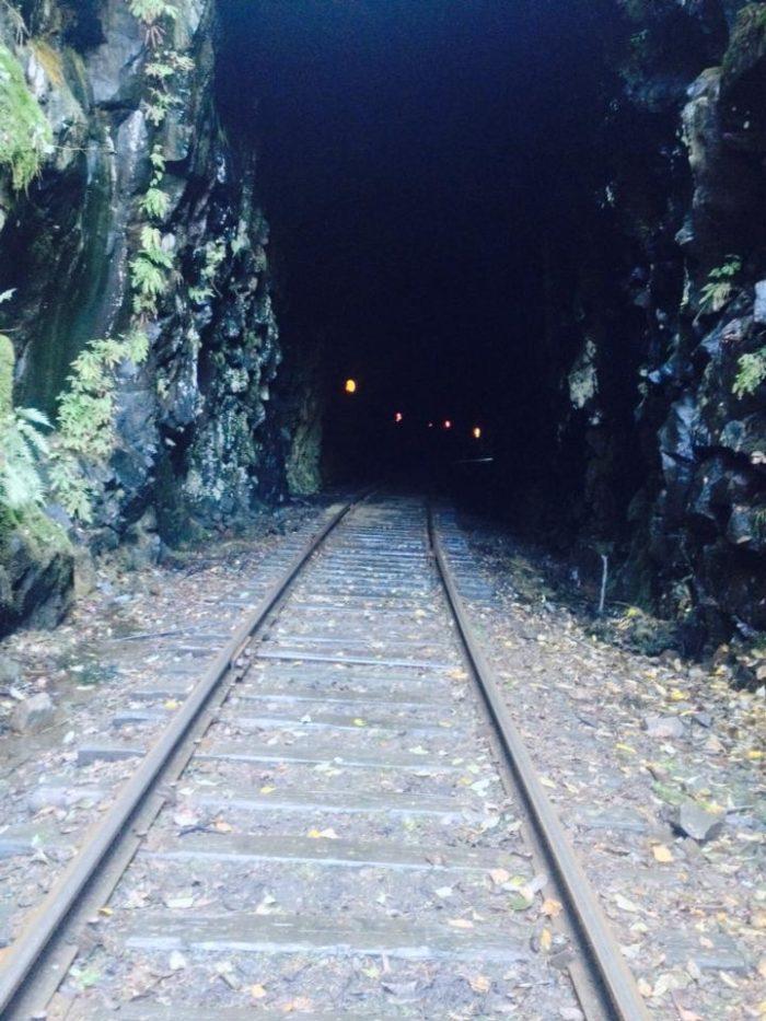 The diesel train powers through a 330-foot rock tunnel to the Helsson area with a stop at Moulton Station to visit Yacolt Falls.