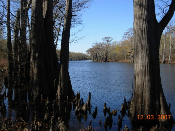 There's no entrance fee to visit this quiet, peaceful wildlife refuge. Plan a day trip soon to enjoy it!