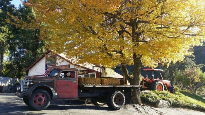 Oak Glen is well known for its apple orchards, so fall is a perfect time to visit.