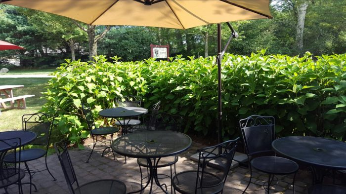 In the warmer months and towards the beginning of fall, the outdoor seating options are a true delight.