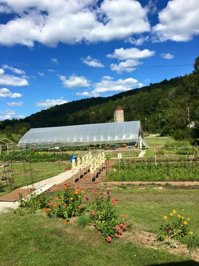 Hudson Farms offers monthly farm-to-table dining experiences.