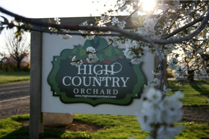 5. Green Bluff High Country Orchard, Colbert