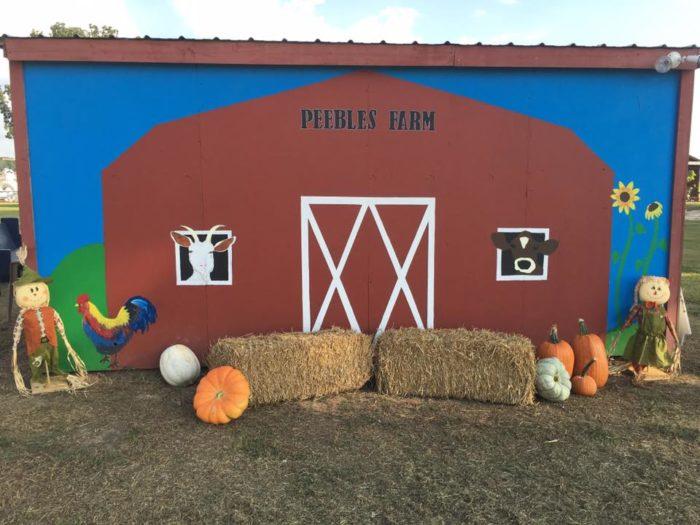1. Peebles Farm and Corn Maze (Augusta)