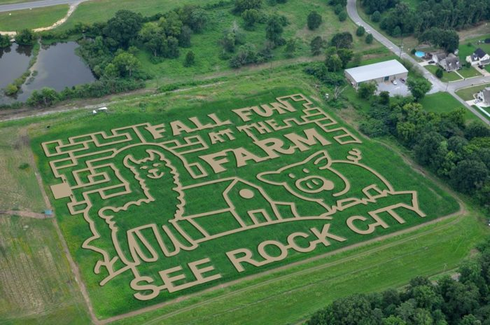 5. The Enchanted Maize at Blowing Springs Farm— 271 Chattanooga Valley Rd, Flintstone, GA 30725