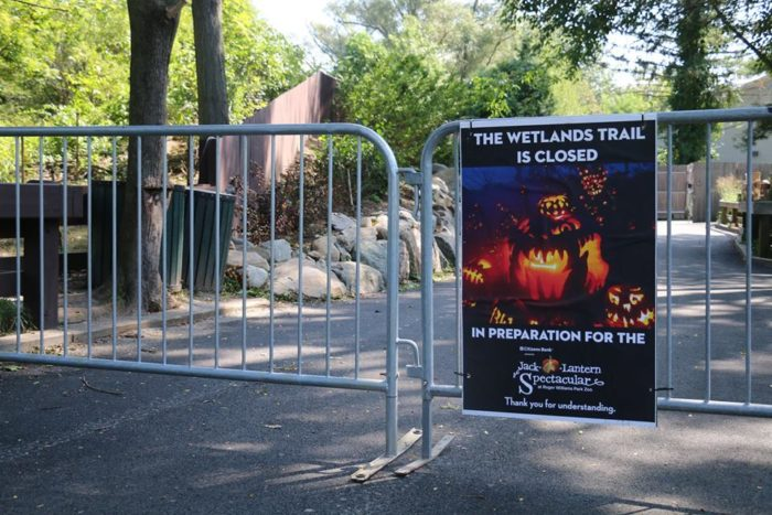 The zoo's wetlands trail, a charming quarter mile walkway through an endangered wetlands habitat, comes ablaze each year with 5,000 unique jack-o-lanterns lining your path.