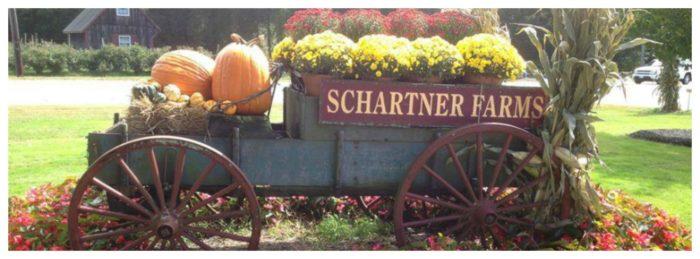 8. Shartner Farms, Exeter