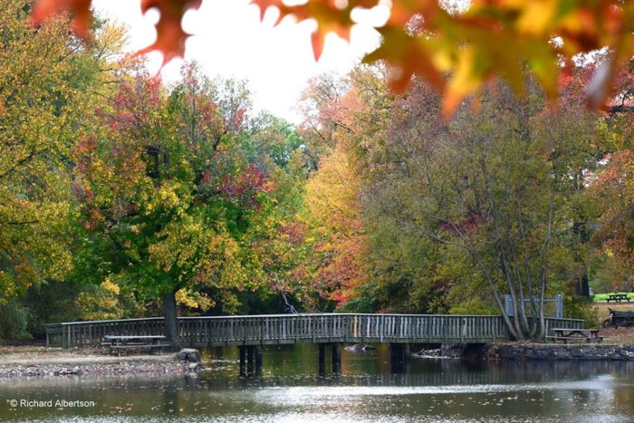 6. Bellevue State Park, Wilmington