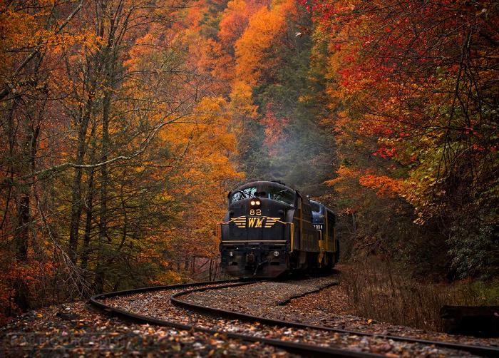 Fall Foliage Train Tours Virginia