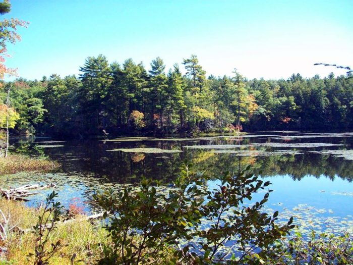 The majority of its 695,000 acres are forest and farmlands. That makes it perfect for nature exploration.