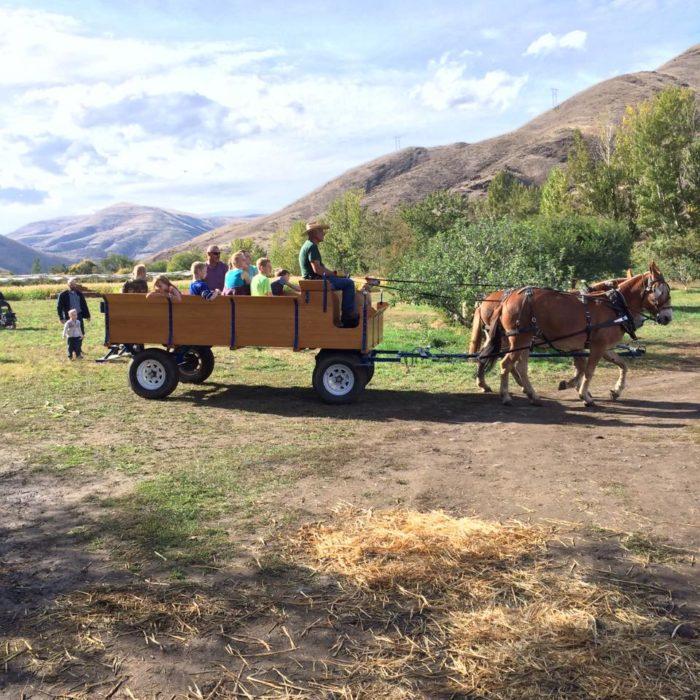 8. Wilson Banner Ranch, Clarkston