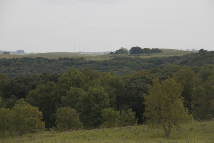 Located near Sisseton, South Dakota, this state park is known as Sica Hollow.