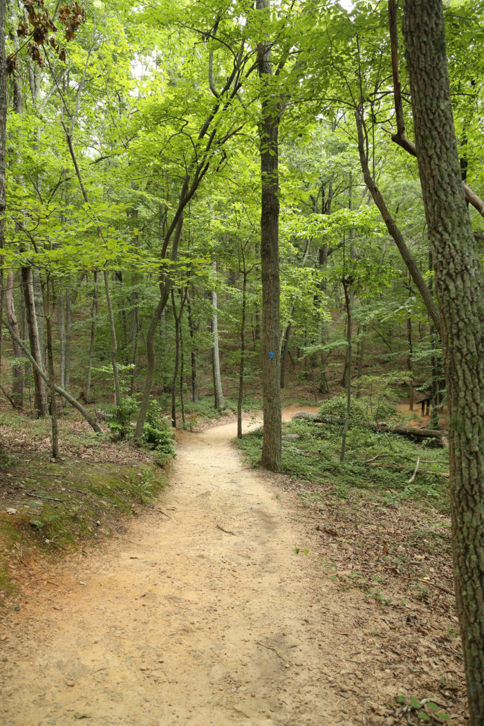 10. Sawnee Mountain Preserve—4075 Spot Rd, Cumming, GA 30040