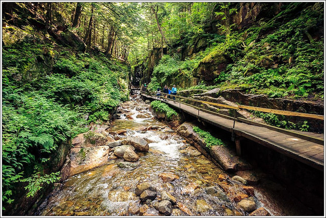 A walkway through the gorge allows visitors to get up close with nature, walking through the floor or the gorge.