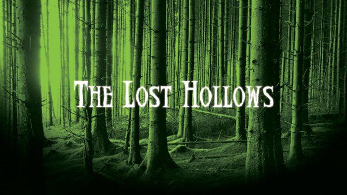 8. The Lost Hollows, 3413 Derek Dr., Lake Charles