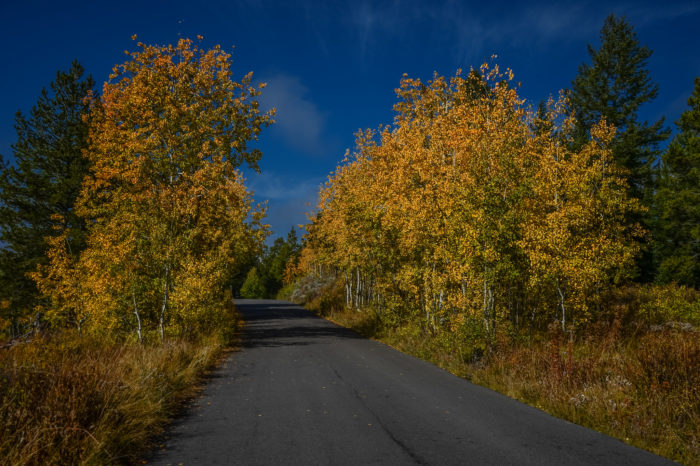 2. Signal Mountain Summit Road
