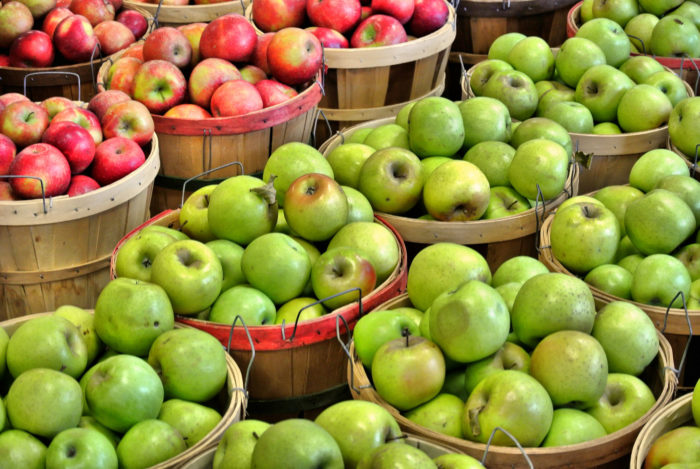Or the ever-popular Georgia Apple Festival which is going on this year from October 8th - 9th, and October 15th - 16th.