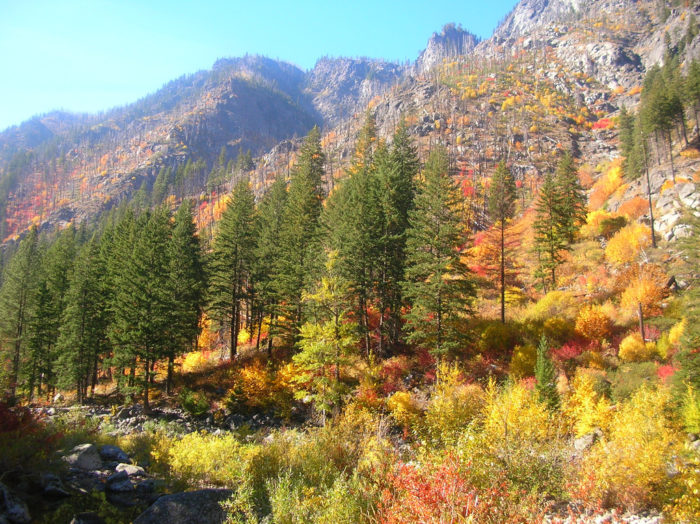 From late September through late November, this area is covered with a spectacular range of fall hues, making its already majestic landscapes truly breathtaking.