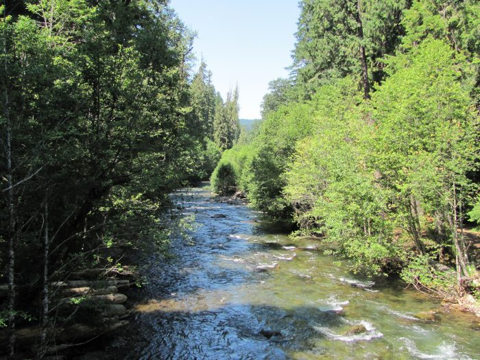 Sit back and relax in this woodsy setting while the  gorgeous North Umpqua River rushes by below.