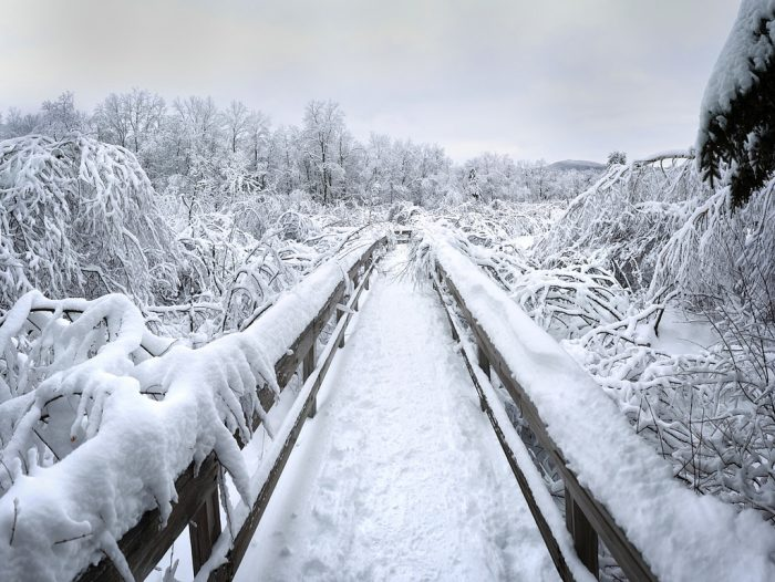 9.  Robert Frost Trail