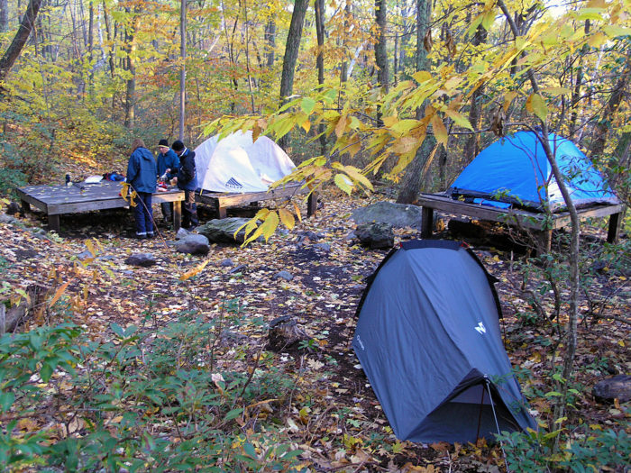 Once you've conquered the ravine, you might want to check out nearby Laurel Ridge campsite, or even head to Mt. Race for some panoramic views of the eastern valley.