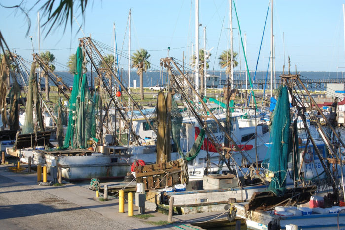 The bustling Fulton Harbor supports commercial fishermen.