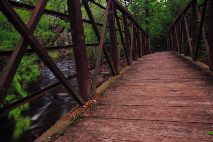 9. Congdon Park Trail - 1.3 miles