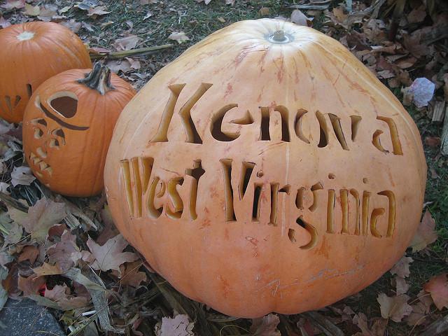 The Pumpkin House can be seen in Kenova, West Virginia.