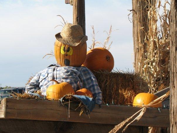 7. Fritzler's Corn Maze & Pumpkin Patch, Through October 31st