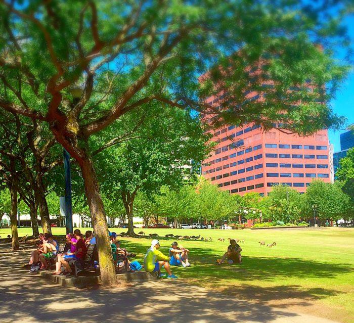 5. City Parks