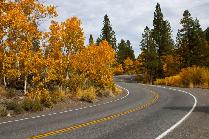 Meander through fall foliage and graceful evergreens on this stunning drive. Around each bend in the road is another breathtaking vista. You'll be eager to see what is behind each curve.