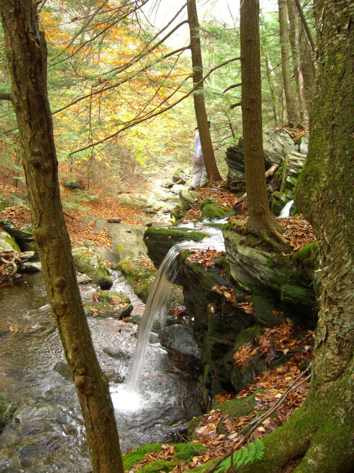 You'll know you're close when you begin to hear the tinkling (or roaring) sound of the ravine's waterfalls.